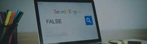 false seo results